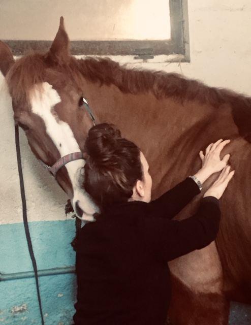 massage-equin-raphaelle-auclaire